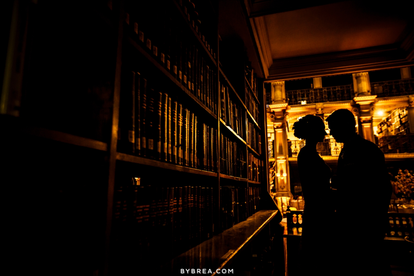 amanda-eric-peabody-library-baltimore-wedding_0110