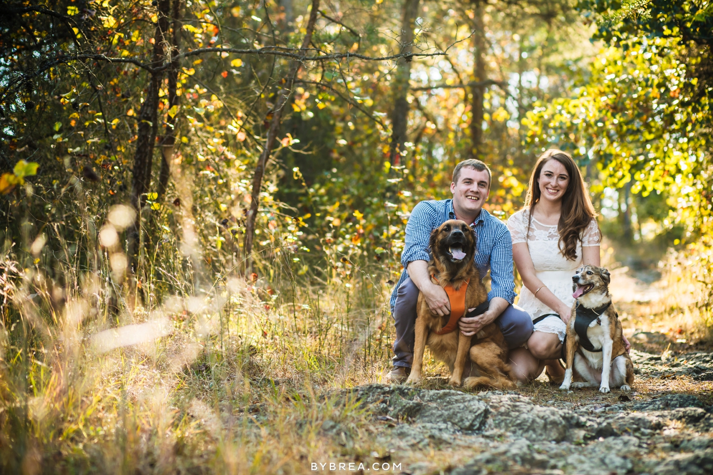 Baltimore engagement photo couple with dogs in the woods