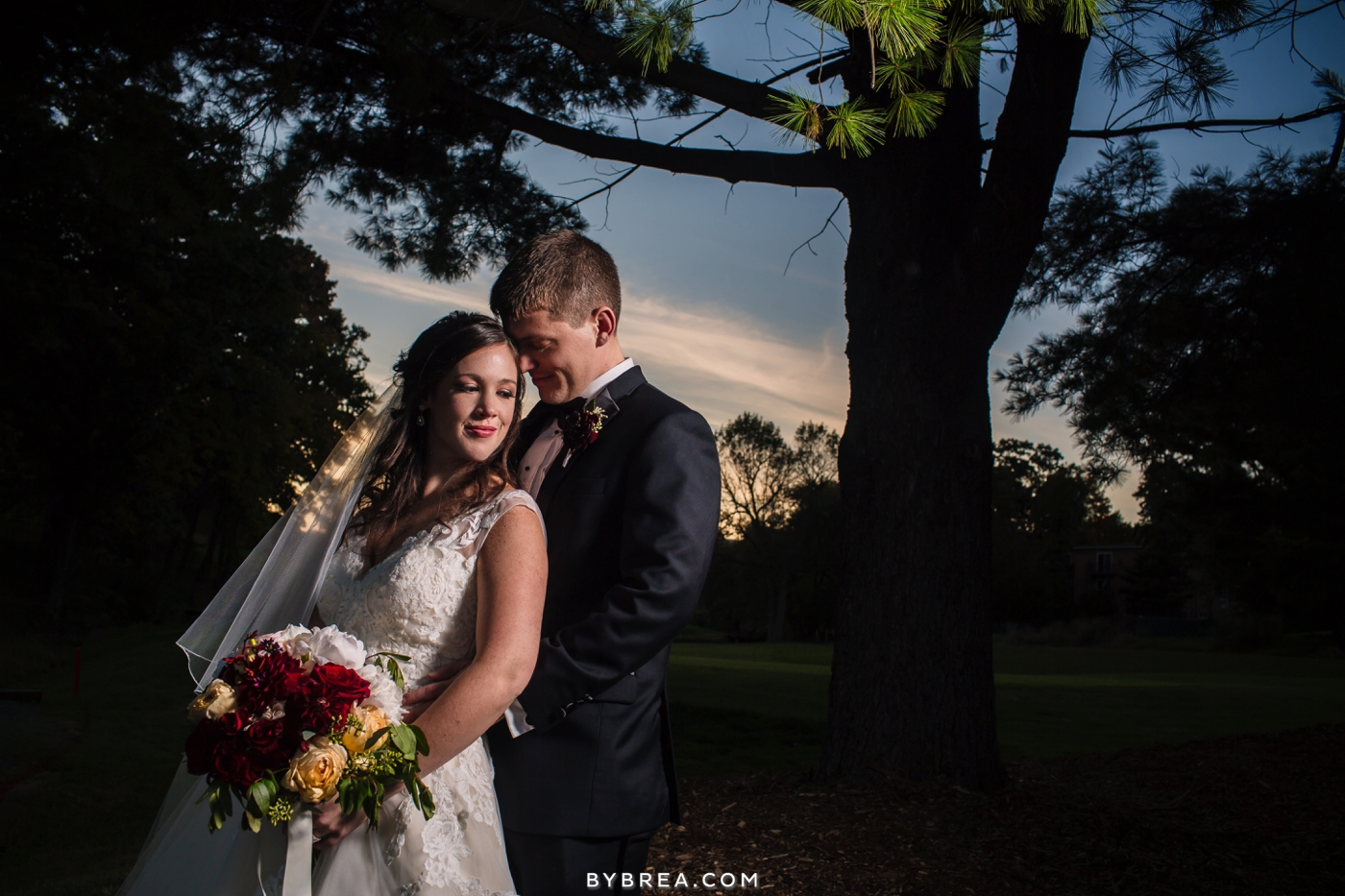 Baltimore wedding photo bridal portrait at sunset