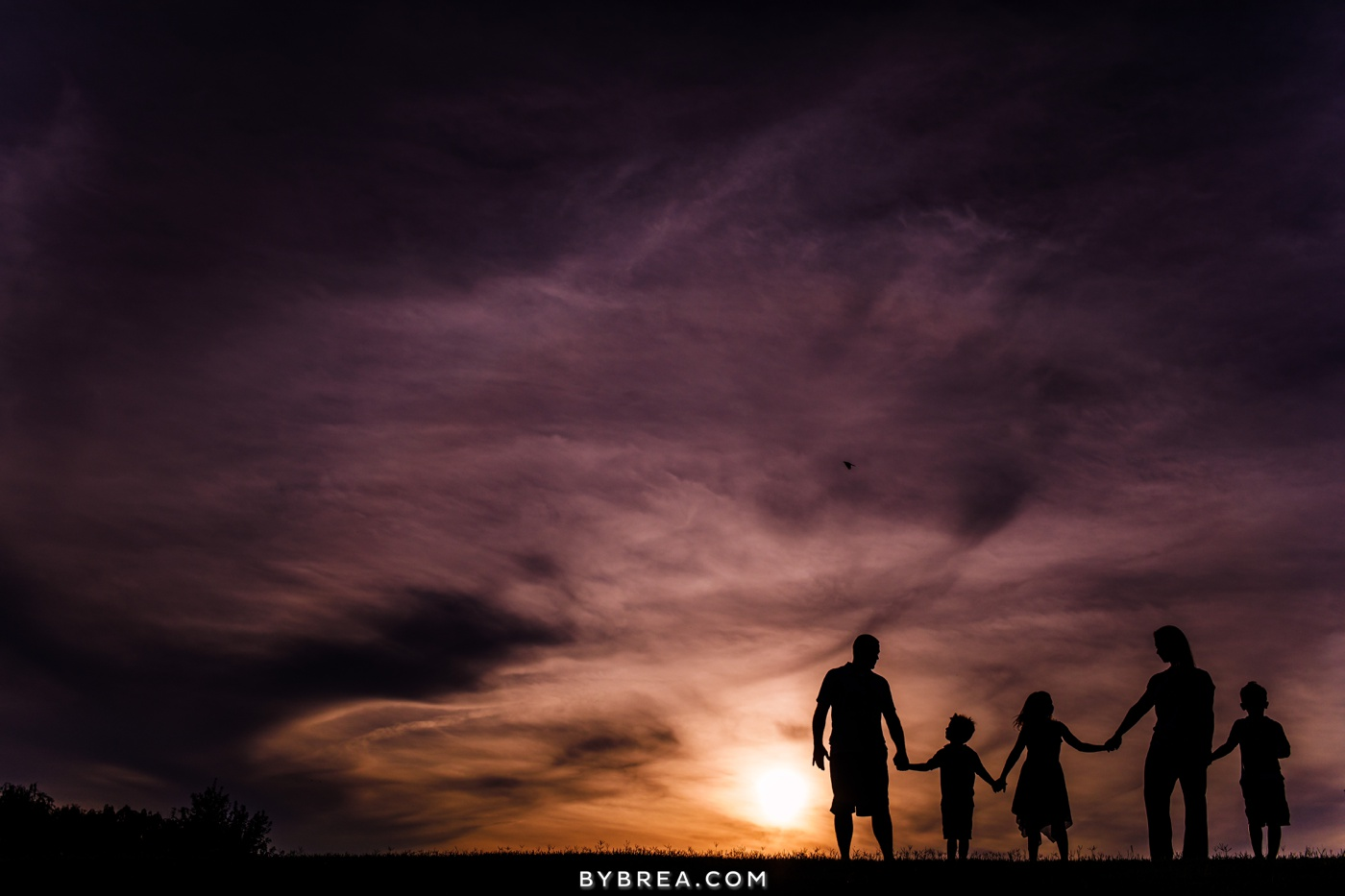 maria-joe-family-engagement-session_1442
