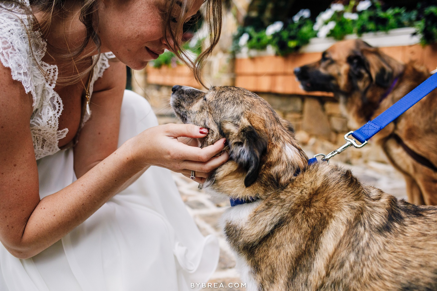 Gabby loving on her dog Jessie on her wedding day
