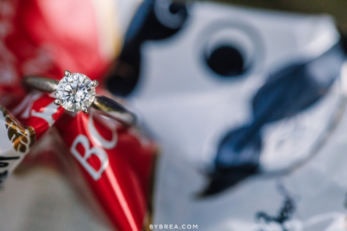 shawn-kacie-baltimore-engagement-photos_0391