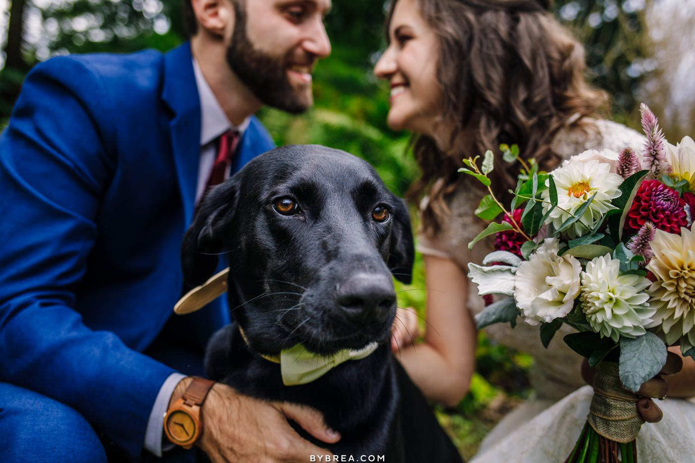 Bohdi the dog and his family looking fly on their wedding day