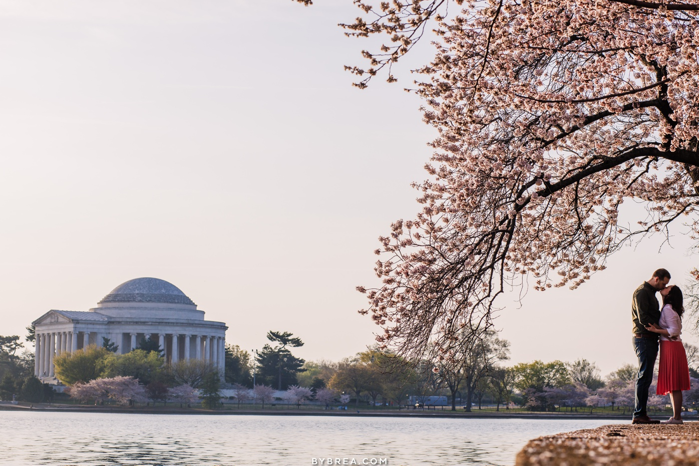 Cherry blossom engagement photo Washington D.C.