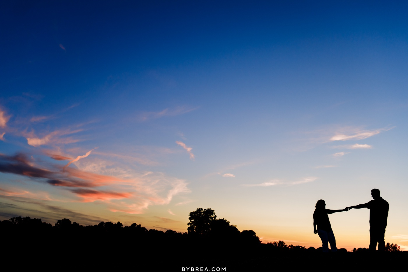 Silhouette photo of couple during engagement session Linganore Winecellars