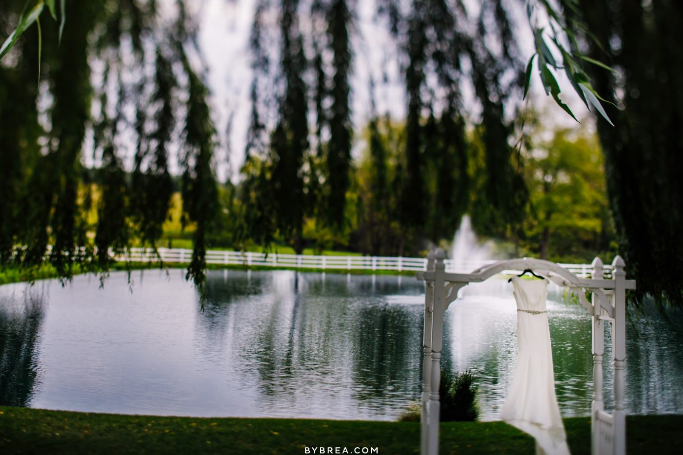 Photo of bride's wedding dress by pond at Pond View Farm in White Hall, Maryland