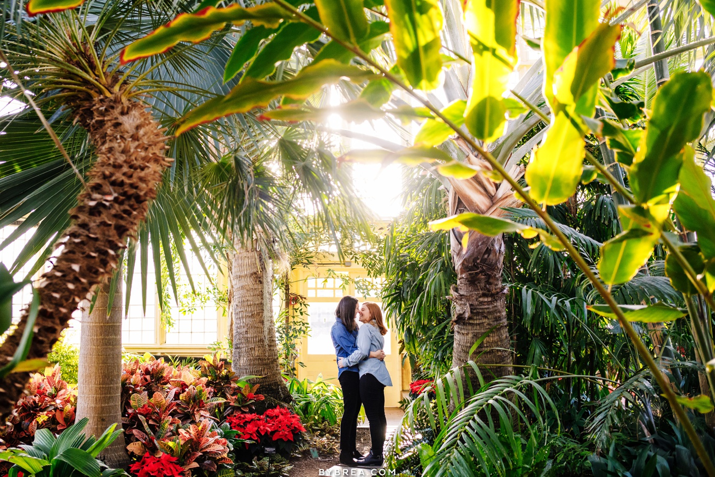 Couples engagement photos Rawling's Conservatory Baltimore wedding photography