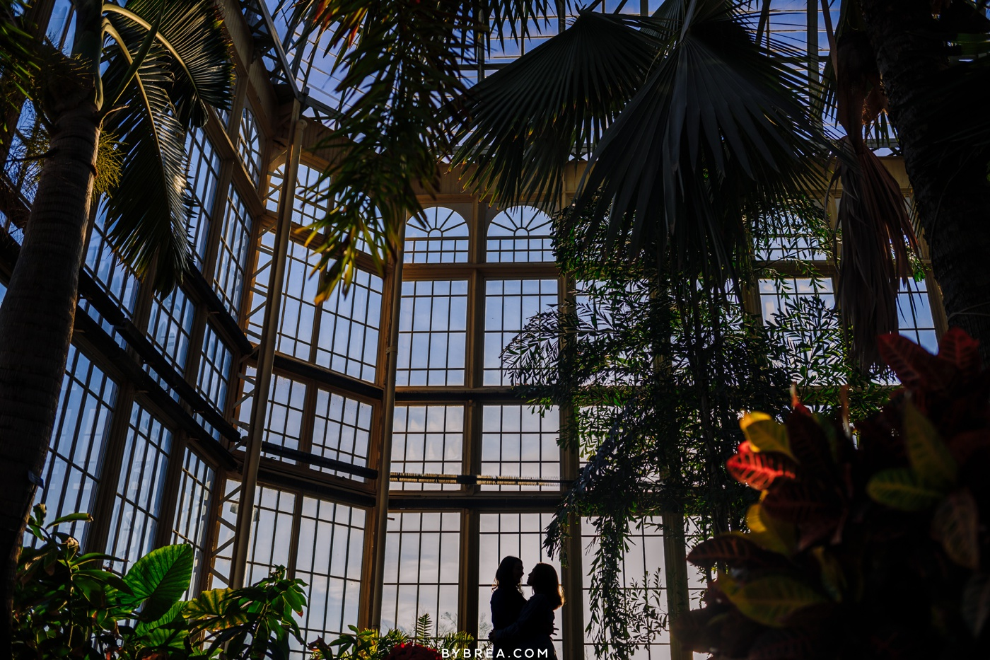 Silhouette photo of same sex couple Rawling's Conservatory engagement photos