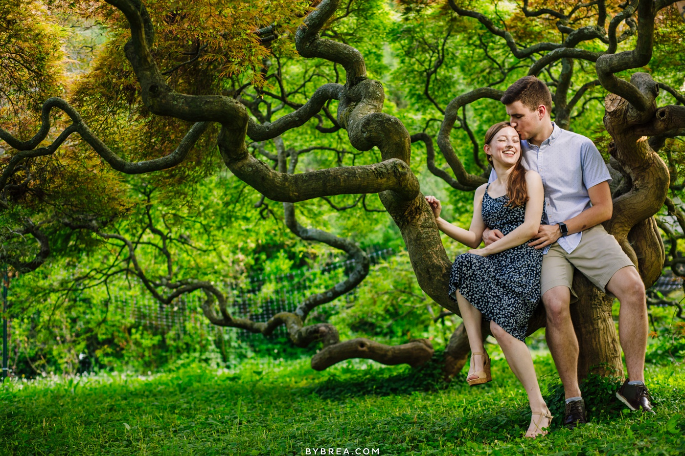 Couple in japanese maple at Cylburn Arboretum.