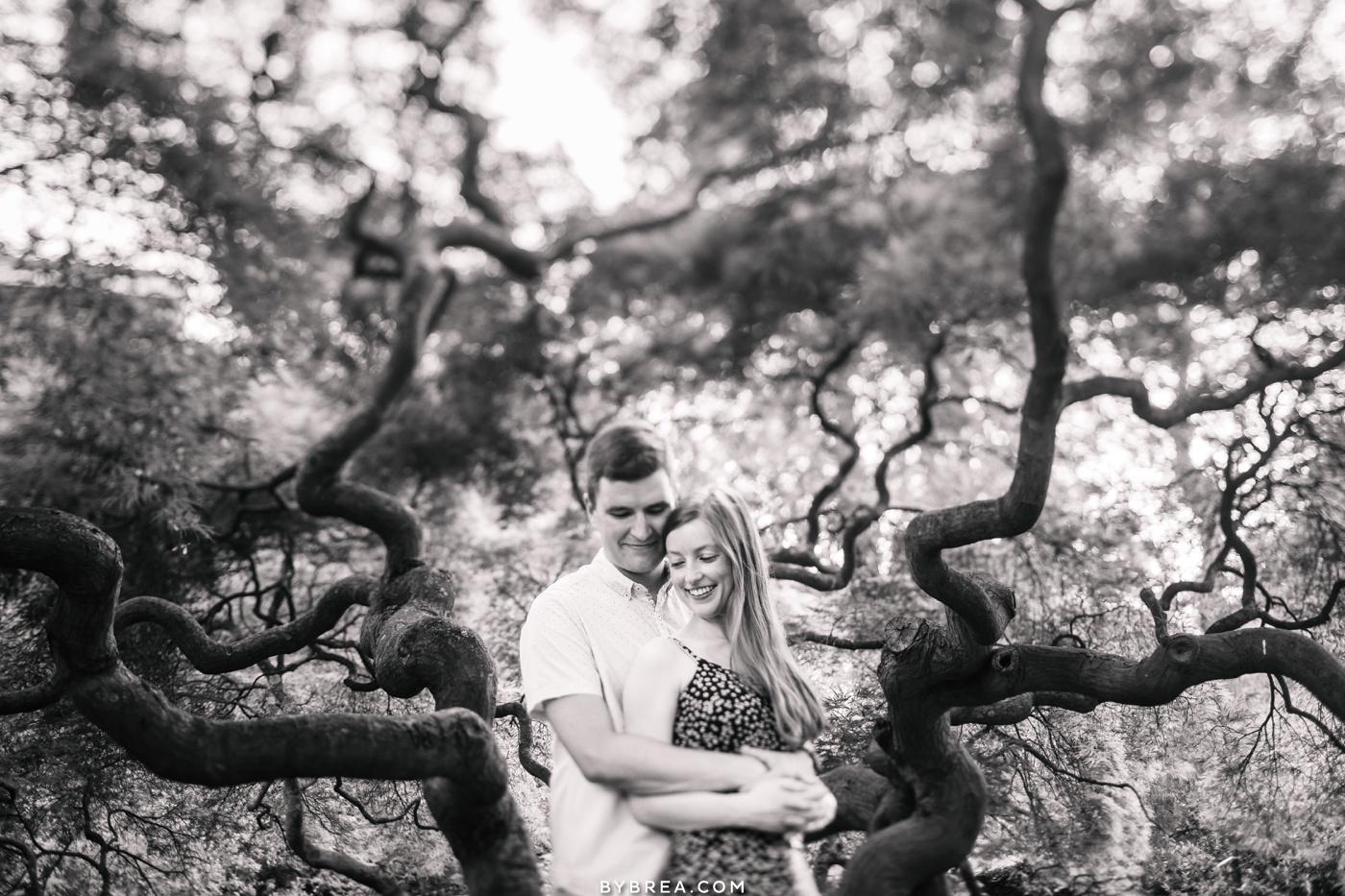cylburn arboretum engagement picture